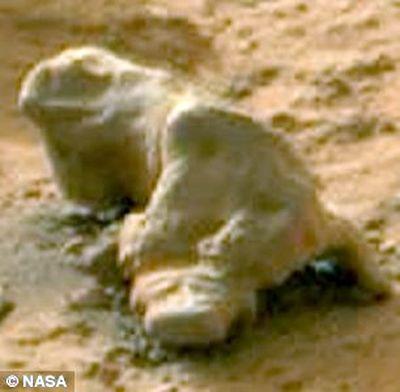 … игуана марсианская, окаменевшая.